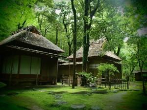 tatsuda nature park