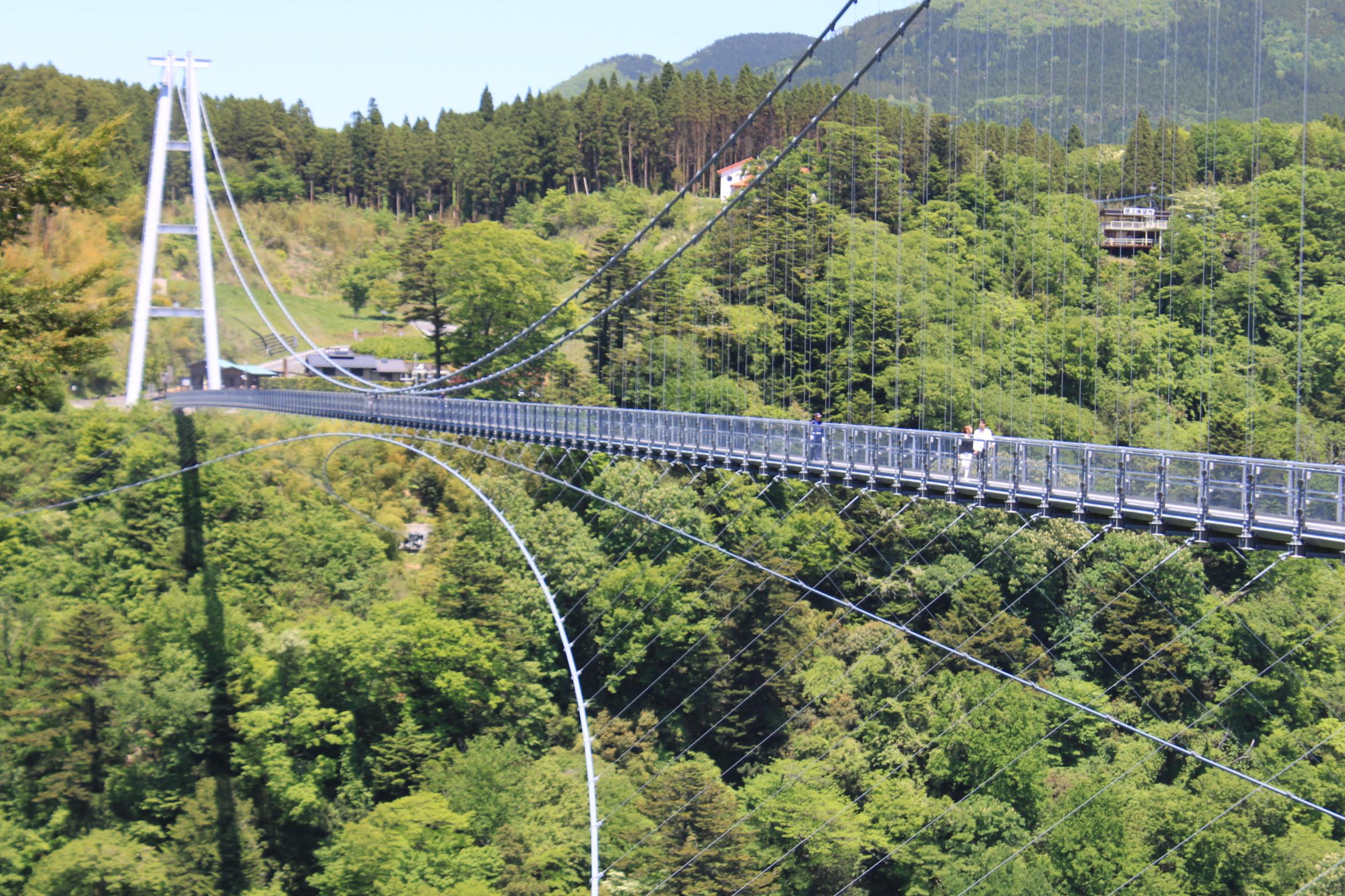 kokonoe yume grand suspension bridge explore kumamoto. Black Bedroom Furniture Sets. Home Design Ideas